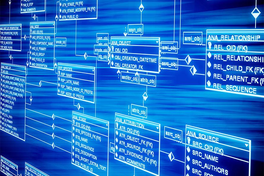 Quais os comandos básicos do MySQL?